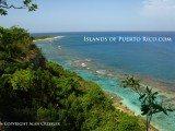 Isla-Mona-Island-Puerto-Rico-playa-sardineras-1